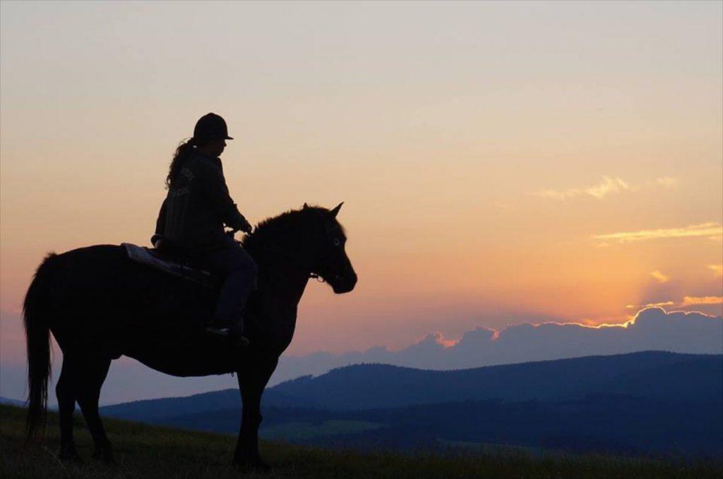 Jazda na koni